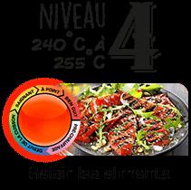 Niveau 4 : 240°C à 255°C | Saisir les aliments